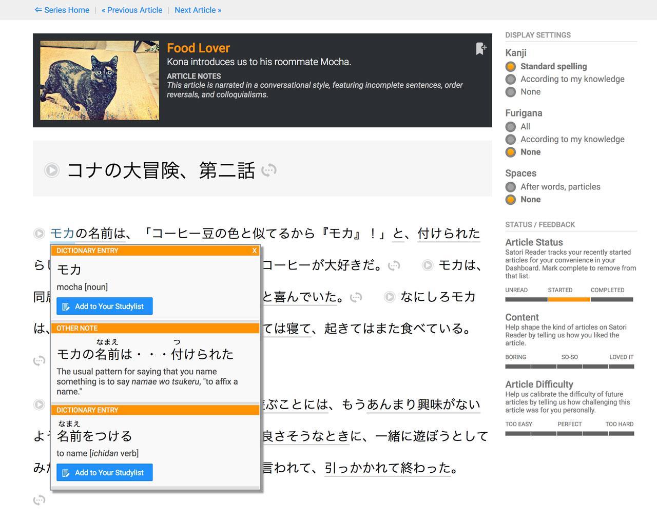 dictionary entry in satori reader