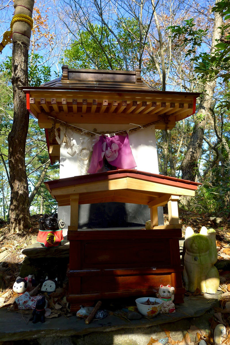 front of cat island cat shrine