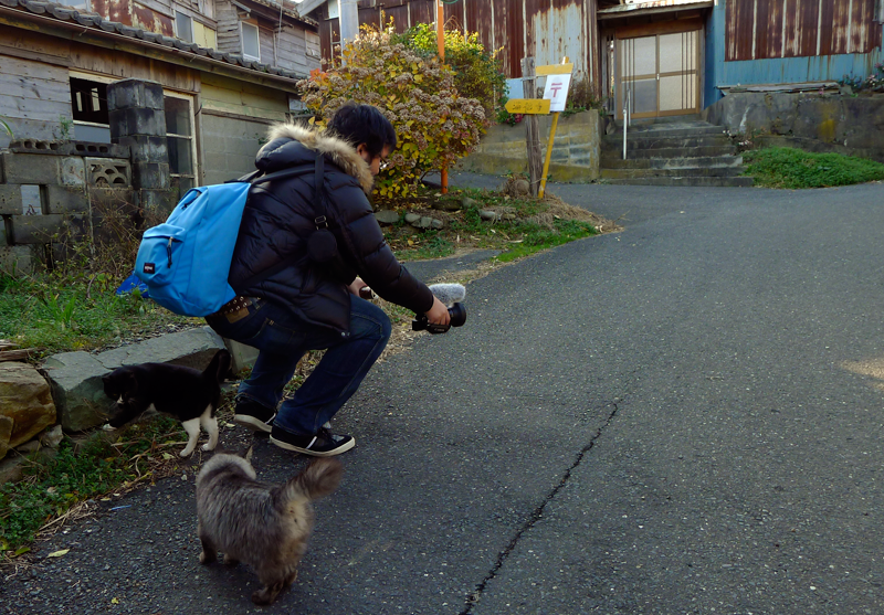 japanese man with camera and two cats on tashirojima