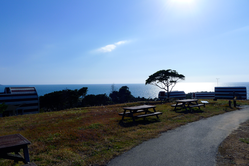 picnic benches on manga island