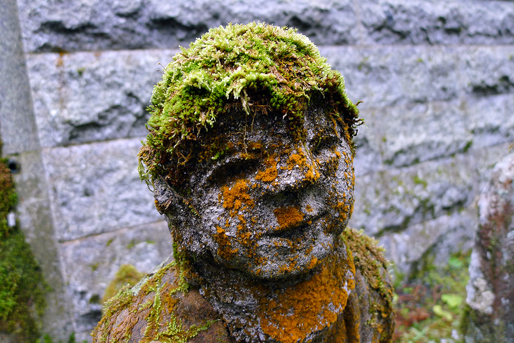 moss covered statue