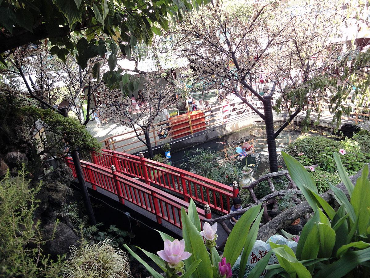 amusement park garden and bridge