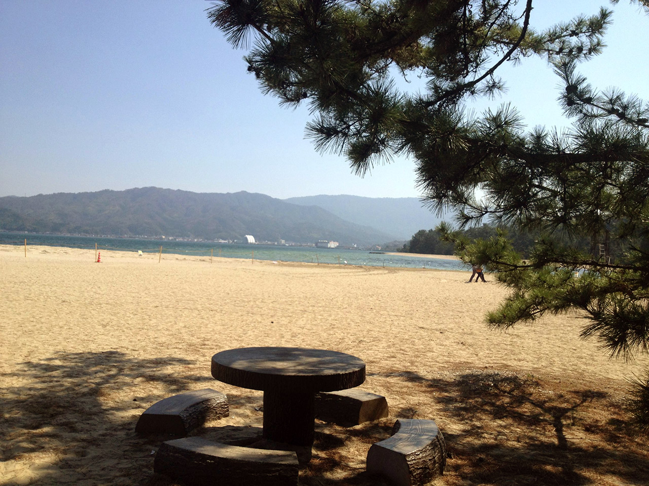 round concrete table at a beach pine trees
