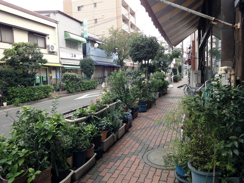 sidewalk lined with potted plants