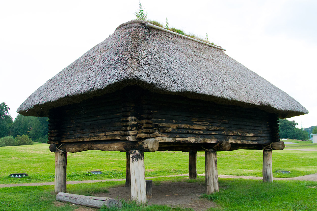 rear view of Japanese thatch hut on support pillars