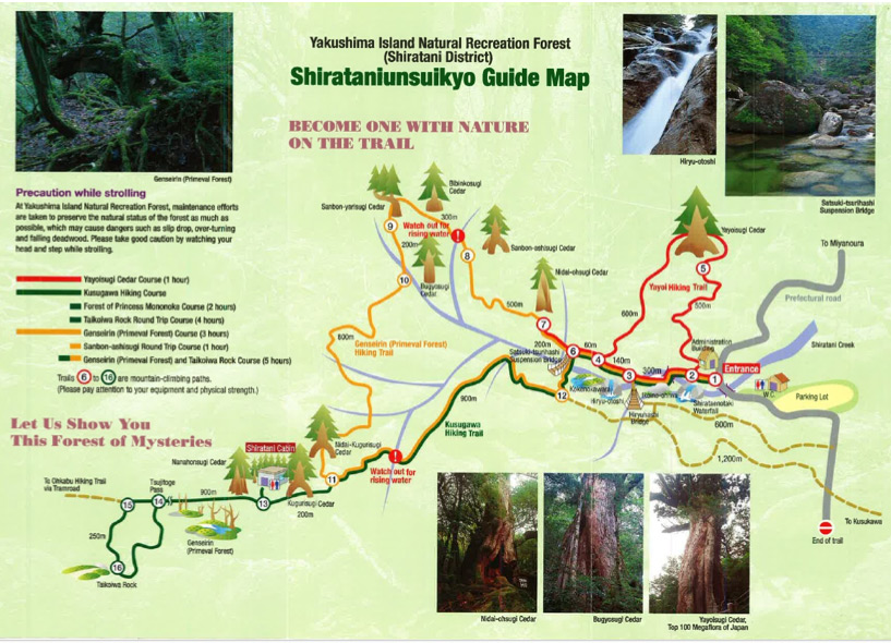 trail map of yakushima forest