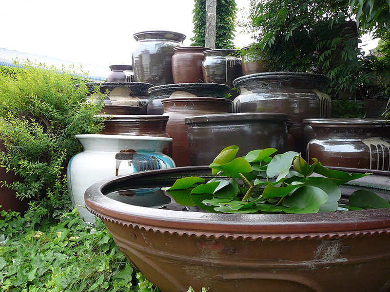 different sized pots
