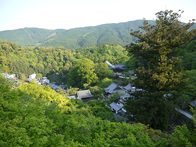 view of japanese rooftops and trees