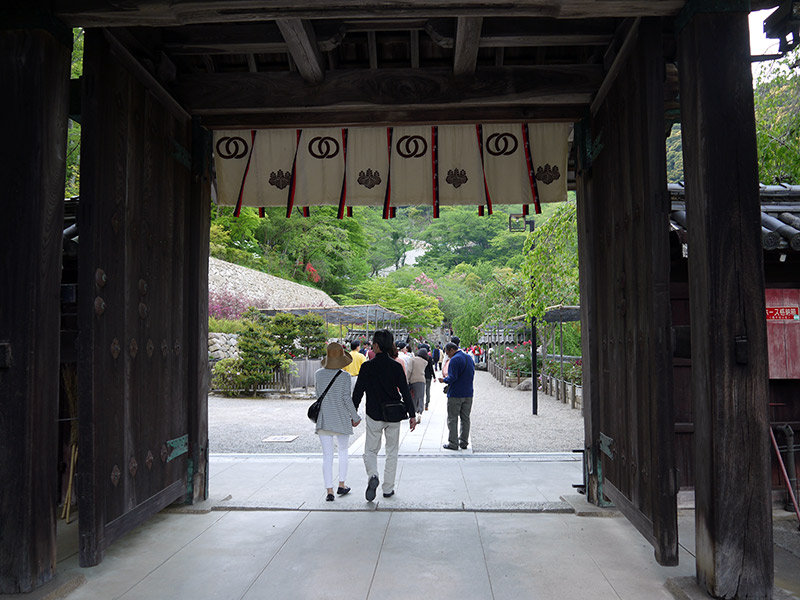 japanese couple leaving a shrine