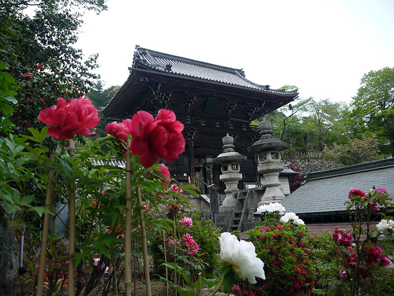 flowers at a shrine in japan
