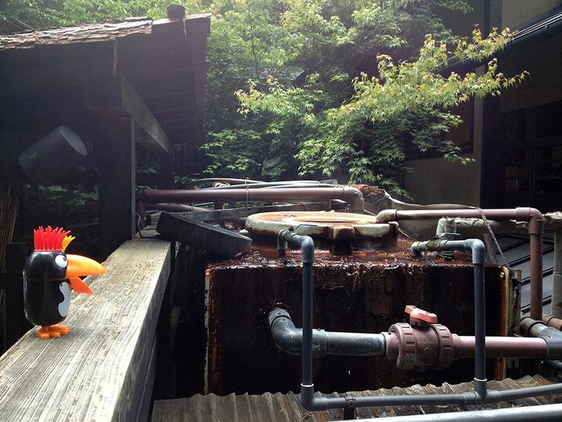 hot springs plumbing