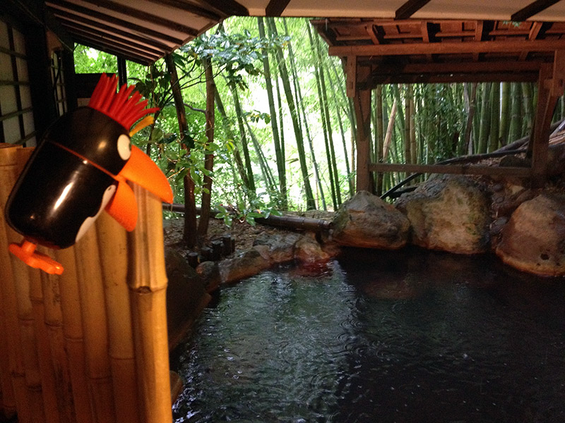 onsen pool