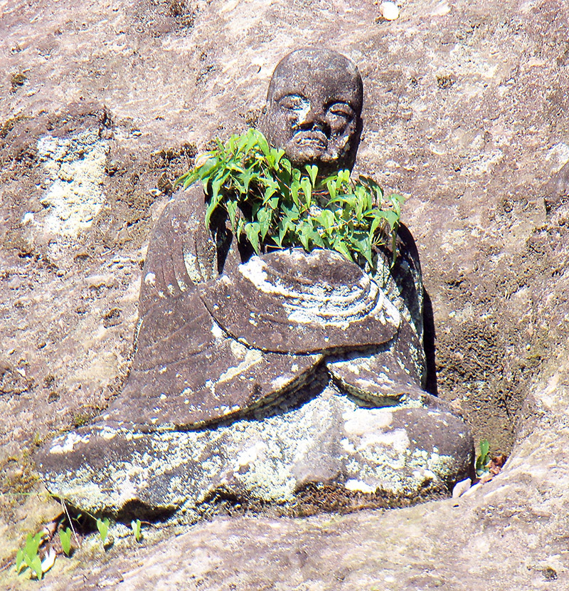Japan overgrown Buddhist statue