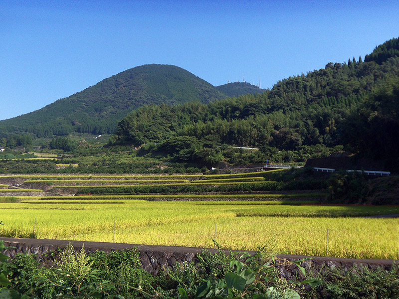 japan hills and fields