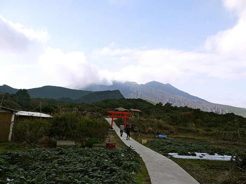 Sakurajima pathway through a tori gate