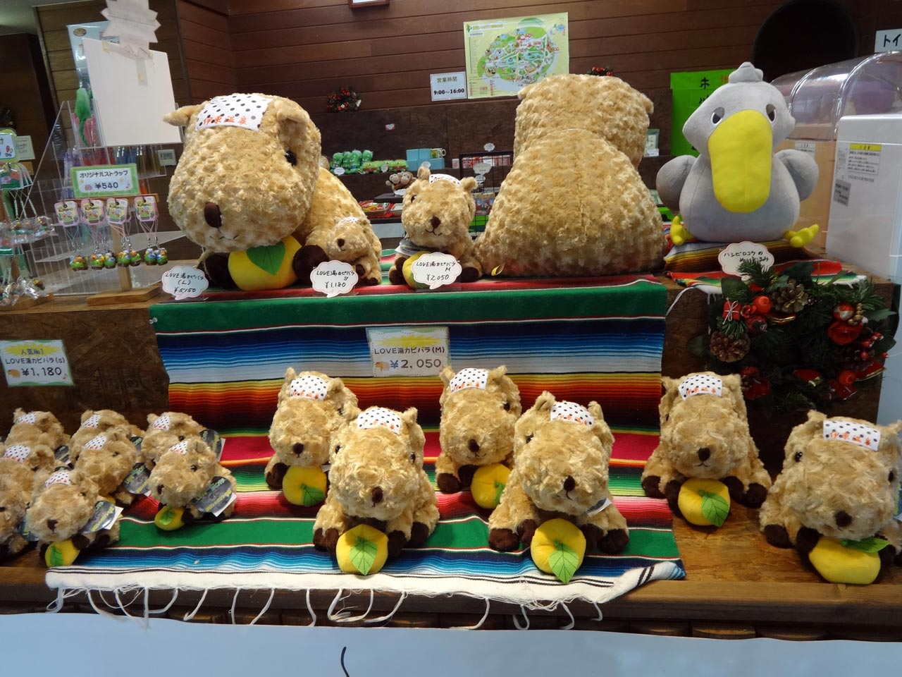 souvernir plushies of capybara