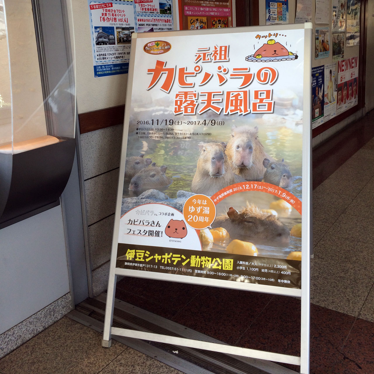 sandwich board ad for izu shaboten capybara onsen