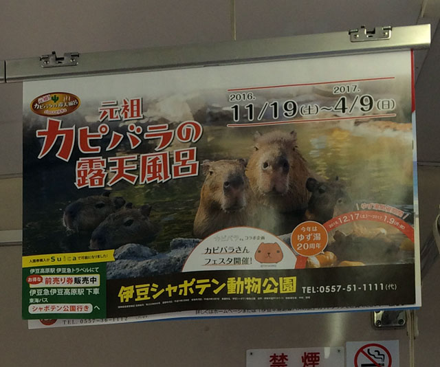 inside of japanese train with capybara advertisement