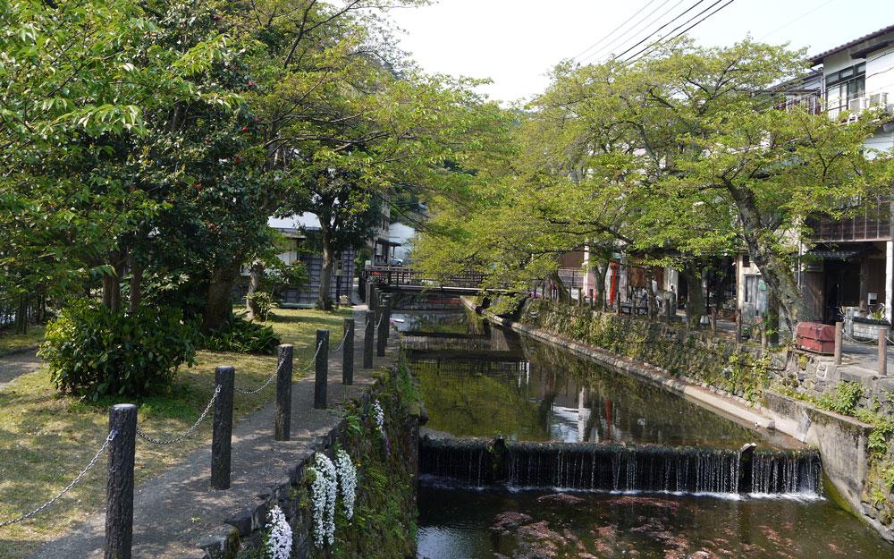 maruyama river in kinosaki