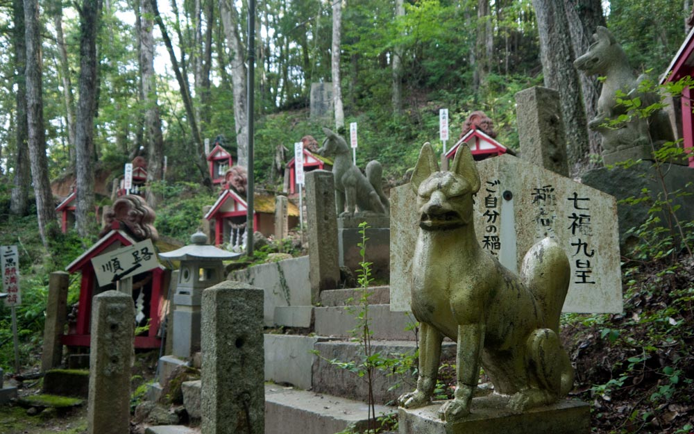dozens of inari shrines and fox statues in aichi prefecture