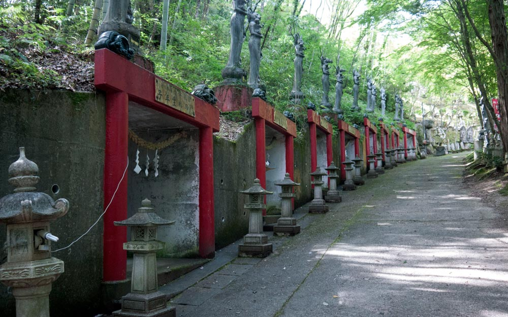 temple path lined with stone lanterns and torii gates