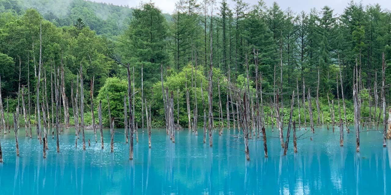 Aoi Ike Pond