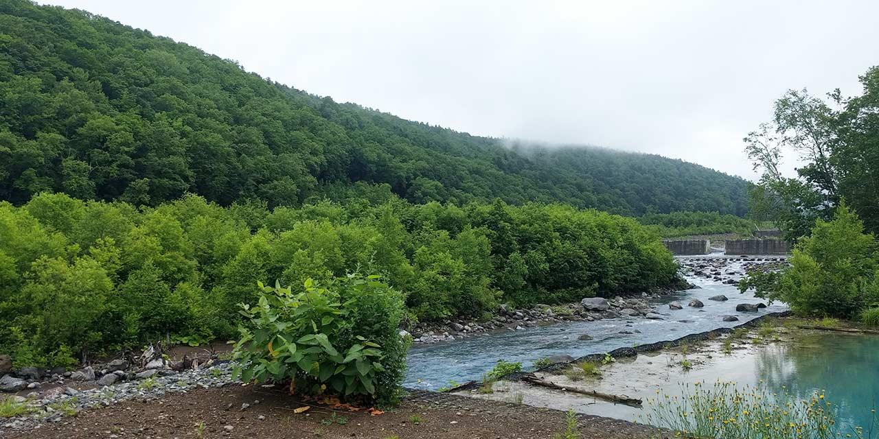 Biei river
