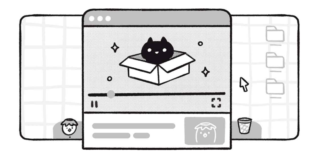 video of a cat in a box
