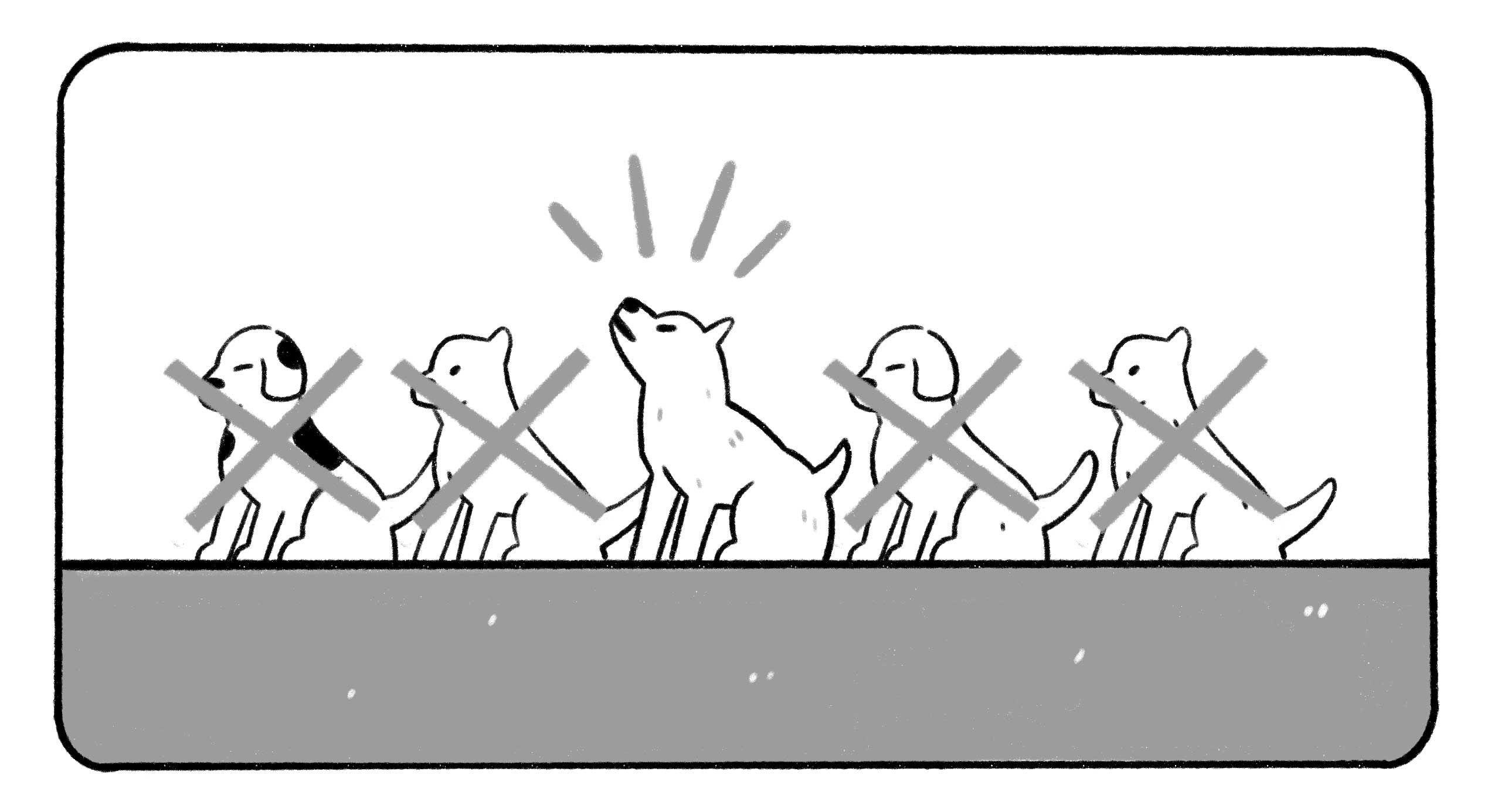 dogs in a line up, one is singled out and barking